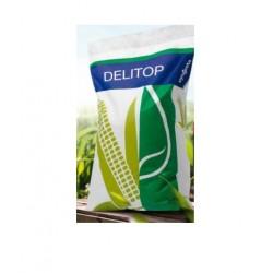 1707-300050, 1707300050 Kwalifikowane nasiona kukurydzy Delitop