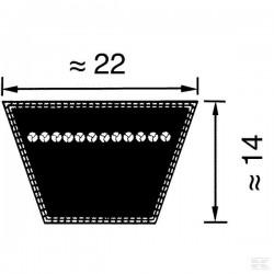 VB223760 Pas klinowy klasyczny DIN 2215 C/22, 3760 mm