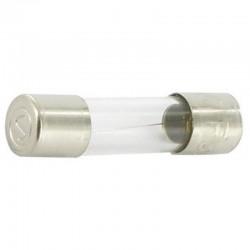 SI23509 Bezpiecznik szklany, 10 A