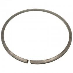 3020504027016, 504027016 Pierścień uszczelniający, zespołu pasowego - wariatora, pasuje do Bizon